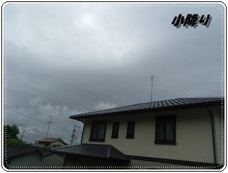 IMGP2592_20120705232440.jpg