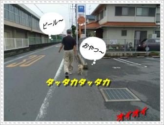 IMGP2616.jpg