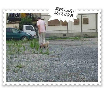 IMGP2761.jpg