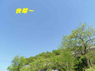 IMGP9020.jpg