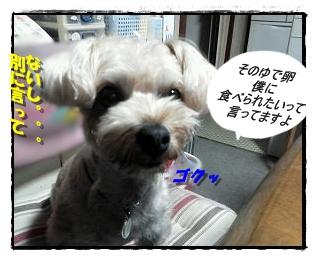 IMG_20120705_194442.jpg