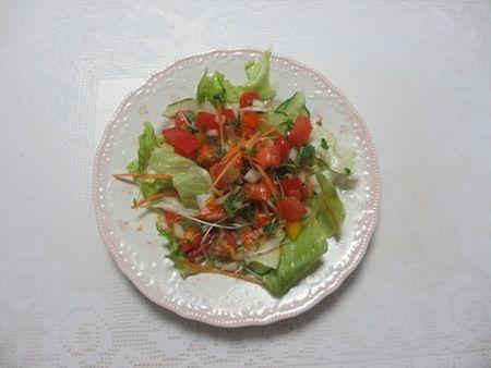 サルサ使用のサラダ