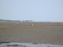 貝ほり海岸