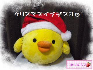 ちこちゃん日記★149★クリスマスイブでしゅね-1