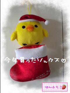 ちこちゃん日記★149★クリスマスイブでしゅね-2