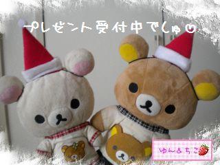 ちこちゃん日記★149★クリスマスイブでしゅね-8