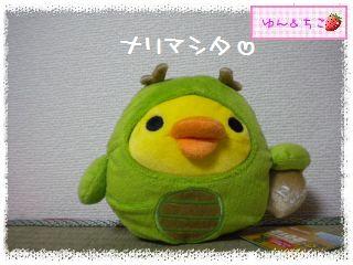 ちこちゃん日記★151★よいお年を~♪-5