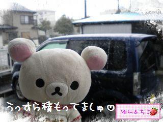 ちこちゃん日記★156★雪でしゅ~-2
