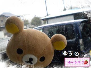 ちこちゃん日記★156★雪でしゅ~-4