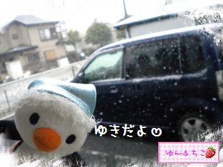 ちこちゃん日記★156★雪でしゅ~-5
