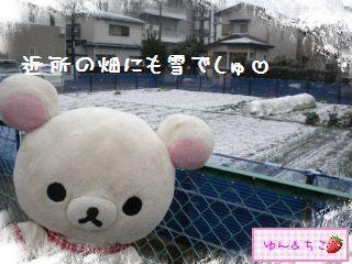 ちこちゃん日記★156★雪でしゅ~-7
