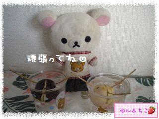ちこちゃんのアボカド観察日記★11★71~77日目-5