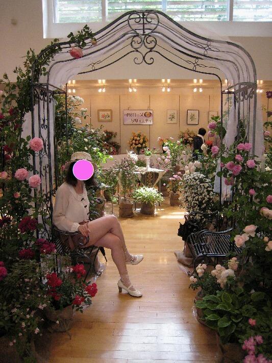 IMG_8447薔薇