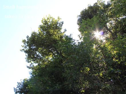 20120828-01.jpg