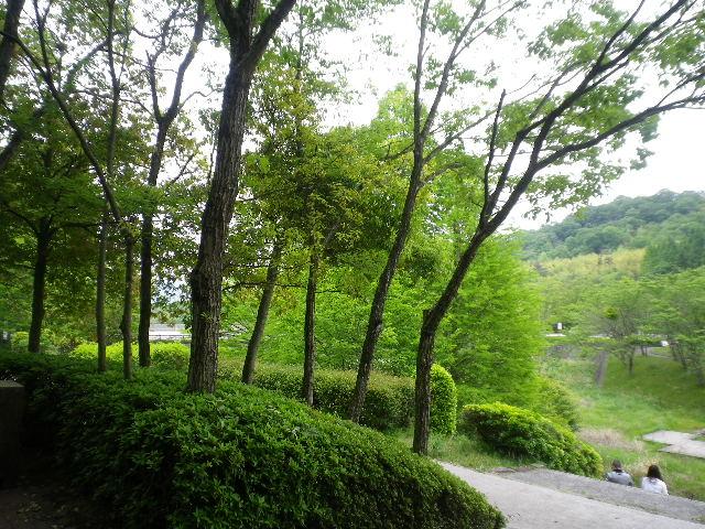 2012_0520yuufuren-作品0004