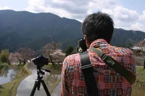 yosino251.jpg