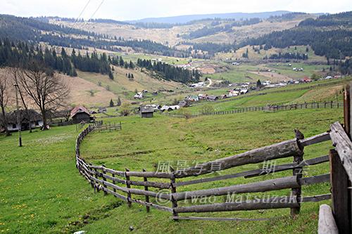 牧草地の柵