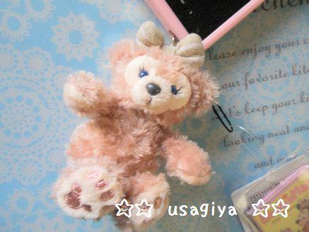 2013_0222_155121-P2220001.jpg