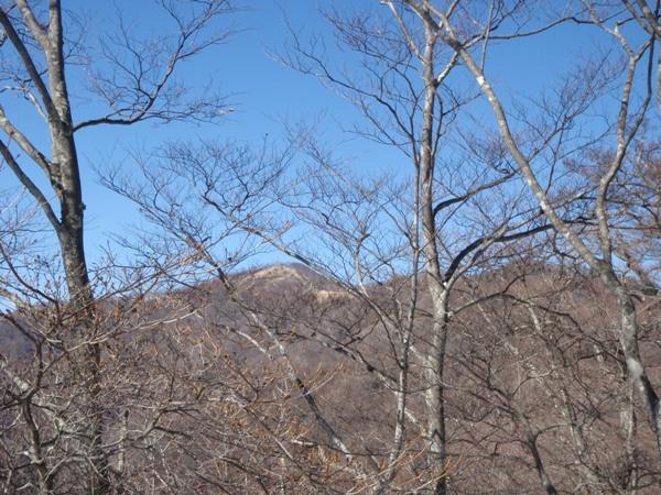 鷹ノ巣~七ツ石山方面