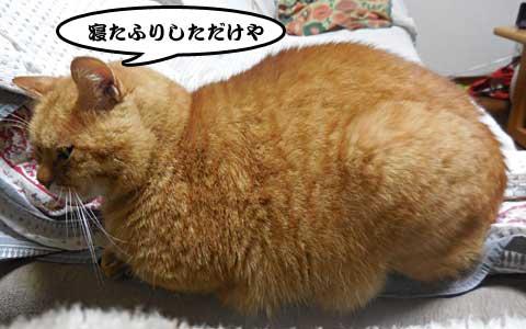 14_12_05_3.jpg