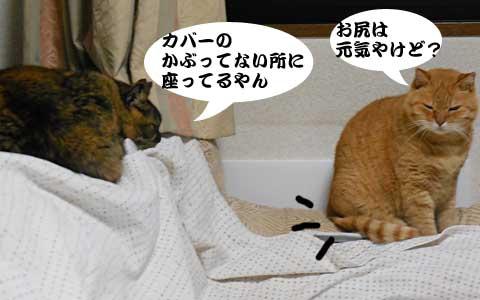 14_12_19_3.jpg