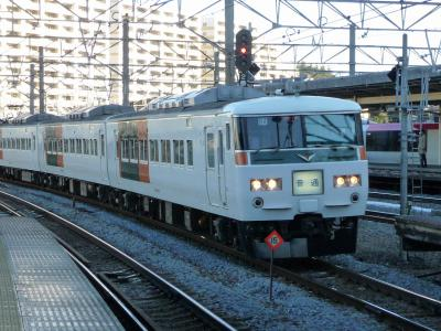 P1060011.jpg