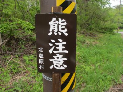 裏磐梯高原