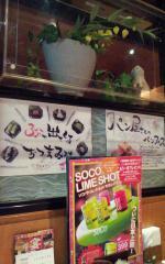 わたみん家 道頓堀 201302 (3)