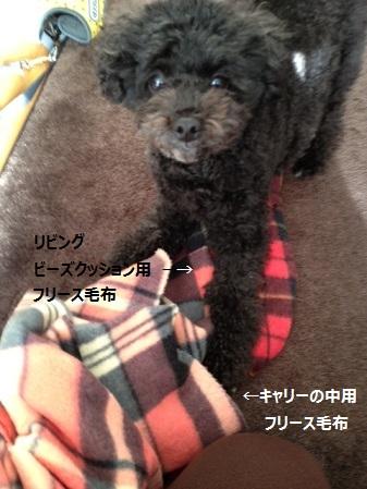 201212191641566ba.jpg