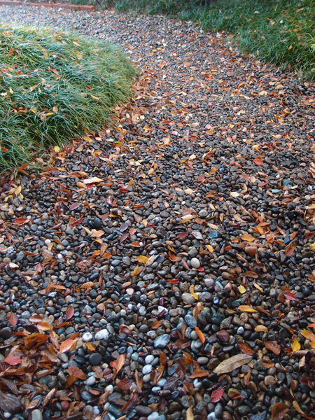 落ち葉の道