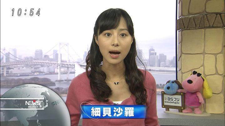 hosogai20130202_01.jpg