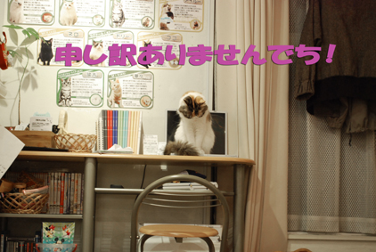 0216-(28)2_20120502172255.jpg
