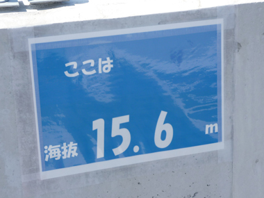 P1110263.jpg
