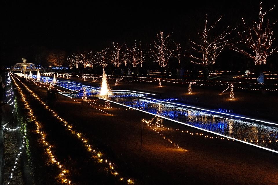 Winter Vista Illumination@Tachikawa