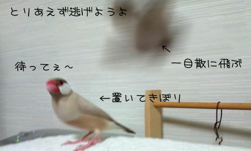 怖いもの_2.jpg