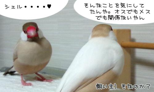 愛があれば_7.jpg