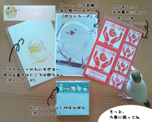 小鳥の作品展2012_1