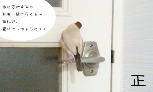 入浴中_2