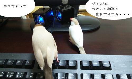 動画でお勉強_3
