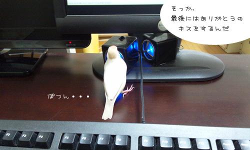 動画でお勉強_5