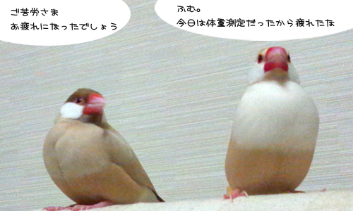 昭和な風景_2