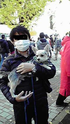 そら 東大駒場祭② 20121125