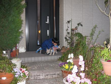 ノブ君と玄関 315
