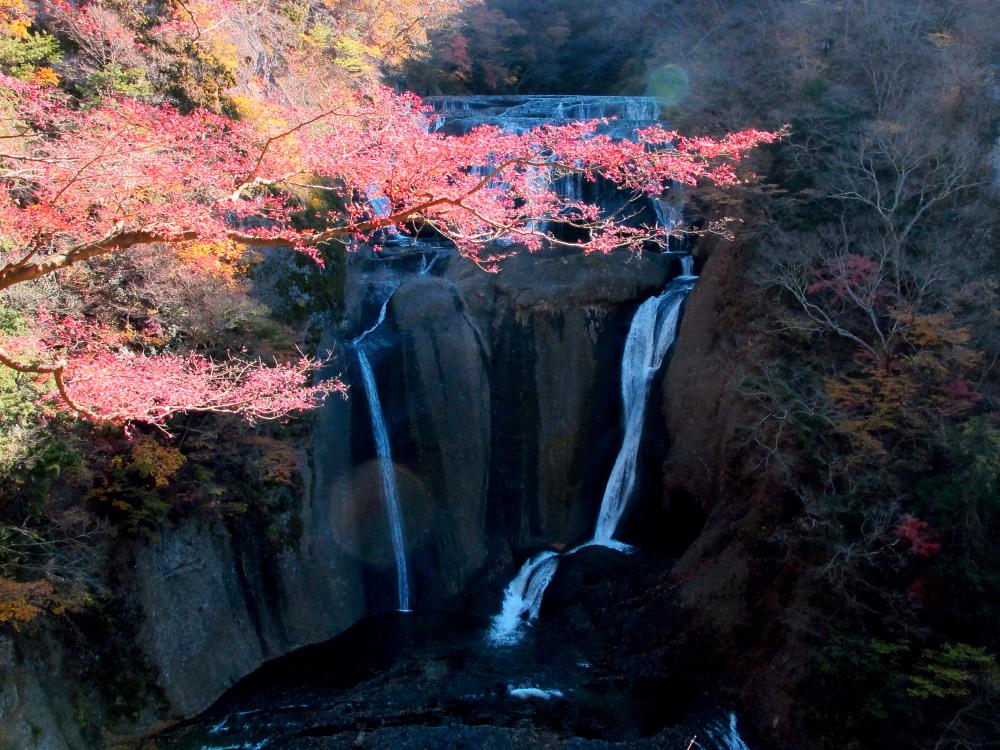 20121125_fukuroda.jpg