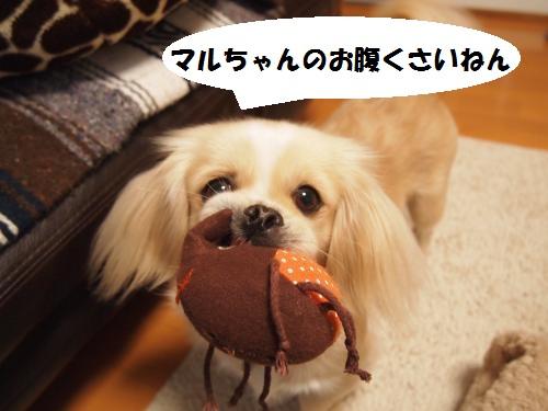 003_convert_20130206224524.jpg