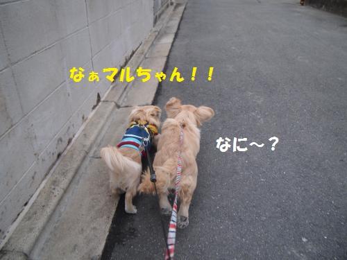 008_convert_20130217231735.jpg