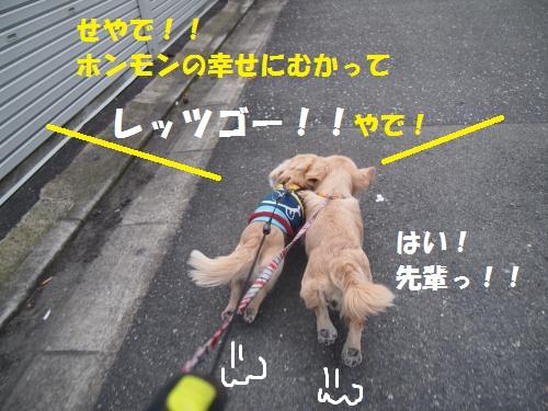 013_convert_20130217231953.jpg