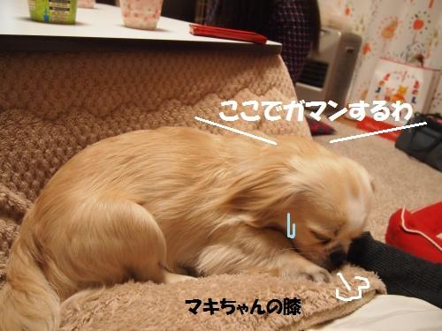 027_convert_20130324215123.jpg