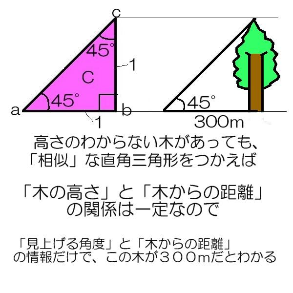 20120928233727d9e.jpg