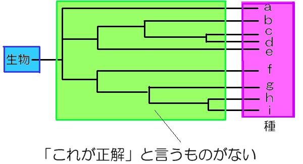 20121007211859325.jpg